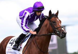 St Marks Basilica Irish Champion Stakes Healy