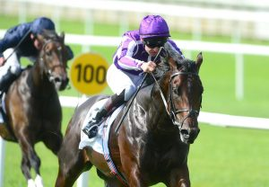 Ten Sovereigns Curragh Web