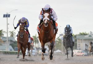 Tiz The Law Winning The Florida Derby Head On