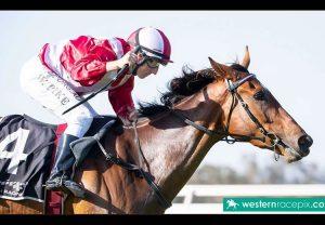 Moyhenna (Westerner) winning the Gr.2 Charleville Mares Novice Chase at Limerick