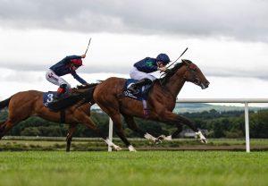 Getabird (Getaway) winning a maiden hurdle at Punchestown