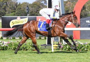 Missrock (Fastnet Rock) winning the Listed MVRC Norman Carlyon Stakes