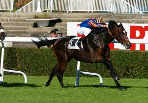 Walk In The Park winning his maiden at Saint-Cloud