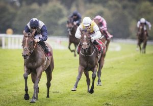 All The King's Men (No Nay Never) winning the Listed Legacy Stakes at Navan