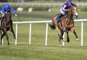Total Recall (Westerner) winning the Grade B William Fry Handicap Hurdle at Leopardstown